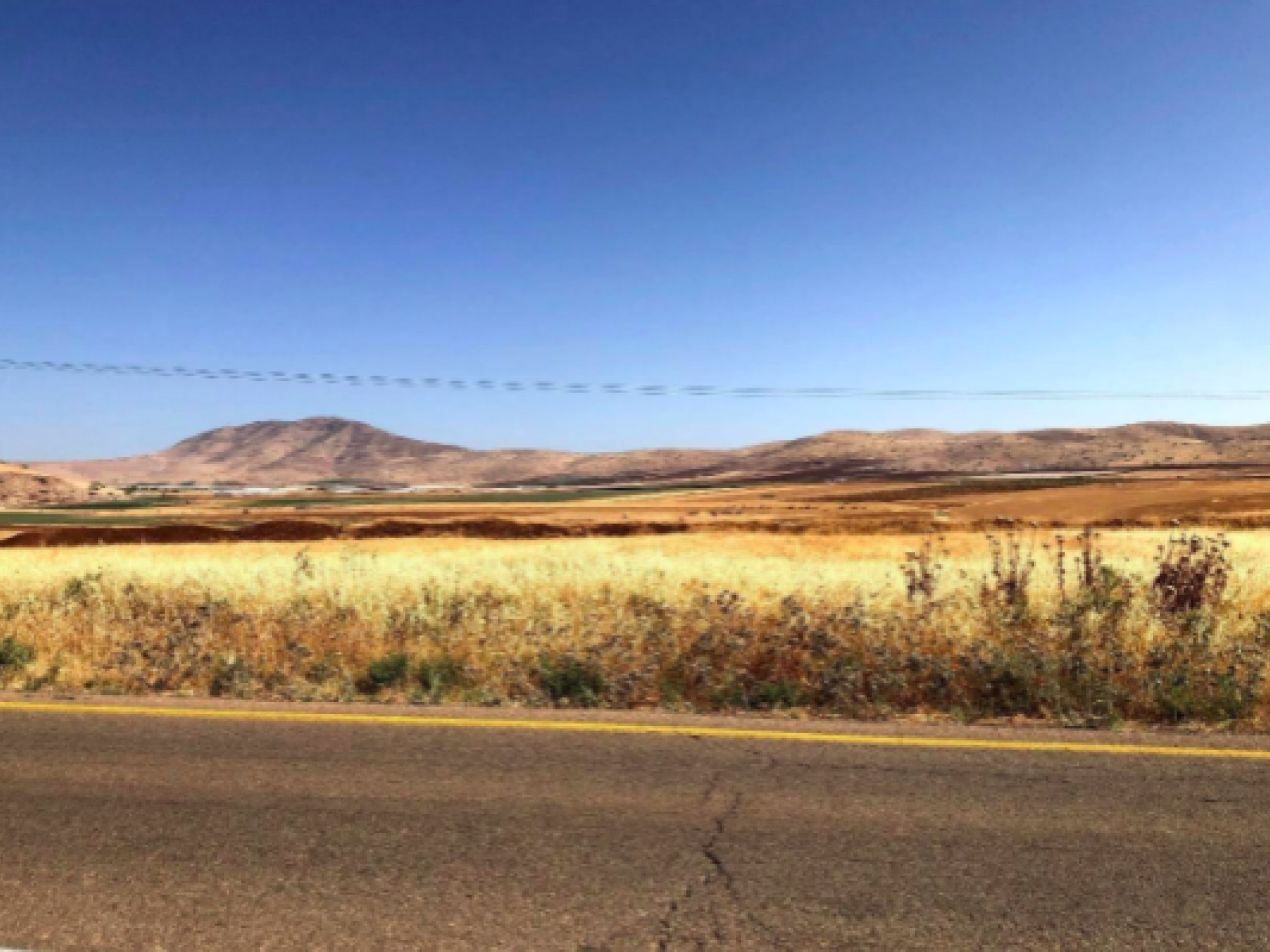 Road with view of hills and yellowed vegetation